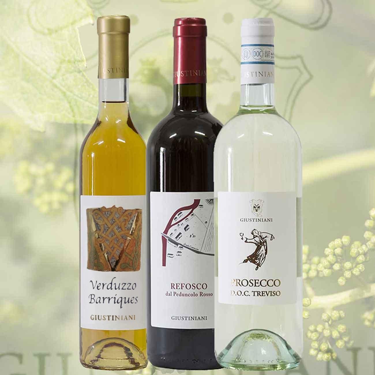 vini-italiani-cantine-giustiniani2